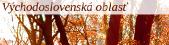 Východoslovenská oblasť